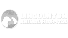 Dogwood-Veterinary_Client-Logos_Lincolton-Animal-Hospital