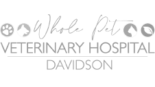 dogwood-veterinary-surgical-care-charlotte-nc