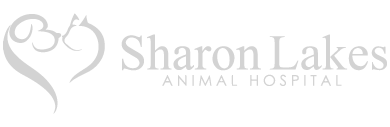 Dogwood-Veterinary_Partner_Sharon-Lake